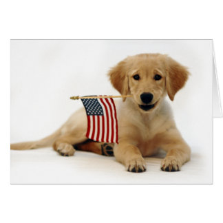 Golden Puppy and American Flag Greeting Card