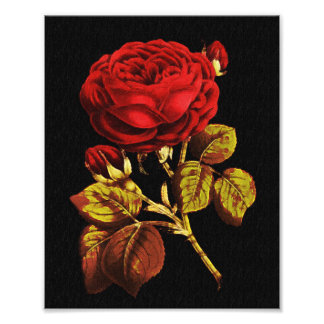 Golden Red Painted Rose Art Photo