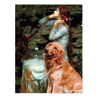 Golden Retriever 1 - Ophelia Seated Postcard