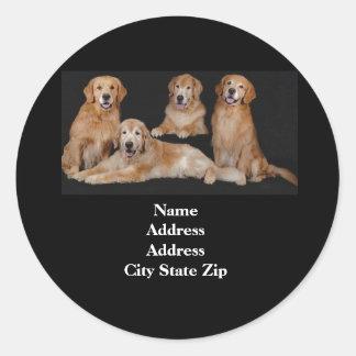 Golden Retriever Address Label Round Sticker