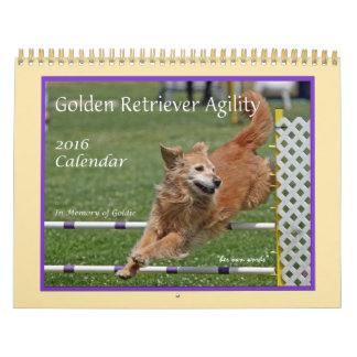 Golden Retriever Agility Calendar