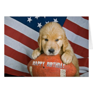 Golden Retriever and Football Birthday Card