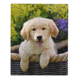 Golden Retriever Baby Dog Puppy Funny Pet Photo _- Jigsaw Puzzle