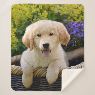 Golden Retriever Baby Dog Puppy Funny Pet Photo .. Sherpa Blanket