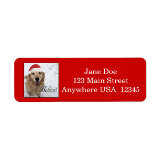 Golden Retriever Believe Christmas Return Address Label
