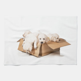 Golden Retriever Box of Fun Tea Towel