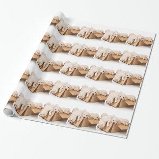 Golden Retriever Box of Fun Wrapping Paper