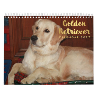 Golden Retriever Calendar 2017