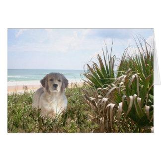 Golden Retriever Card Purfect Puppy Blank Card