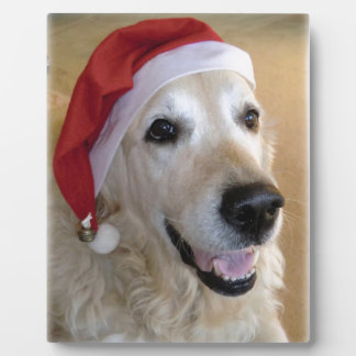 Golden retriever Christmas - Happy Christmas Dog Plaque