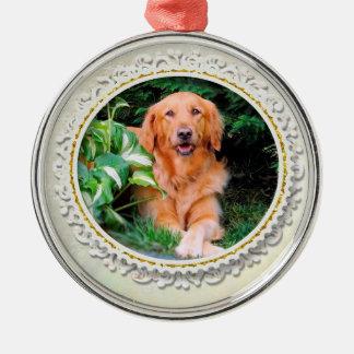 Golden Retriever Christmas Ornament Rnd