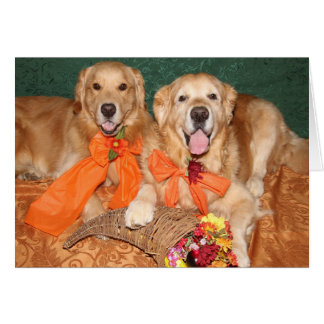 Golden Retriever Cornucopia Thanksgiving Card