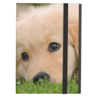 Golden Retriever Cute Puppy Dreaming Photo - hard Case For iPad Air