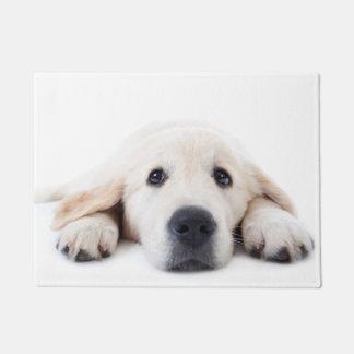 Golden retriever cute puppy lying down doormat