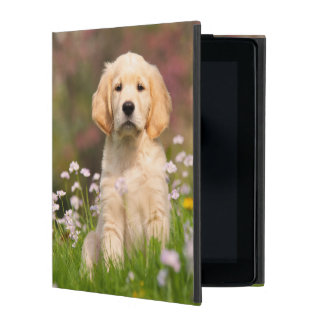 Golden Retriever Dog Cute Puppy - protect Hardcase iPad Folio Case