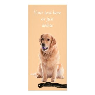 Golden Retriever dog photo custom rack card