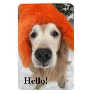 Golden Retriever Dog With Orange Fuzzy Hat in Snow Rectangular Photo Magnet