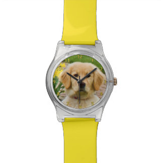 Golden Retriever Dog, Yellow Daffodils Watch