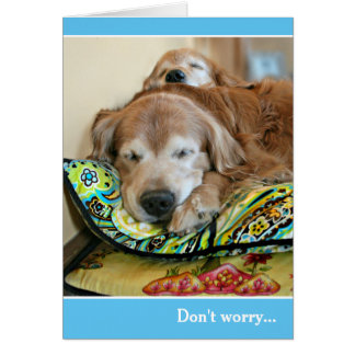 Golden Retriever Dont Worry Theres A Nap For That Card