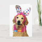Golden Retriever Easter Bunny Christmas Card
