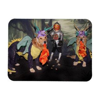 Golden Retriever Fire Breathing Dragons Magnet