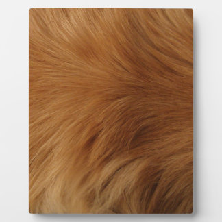 Golden Retriever Fur Plaque
