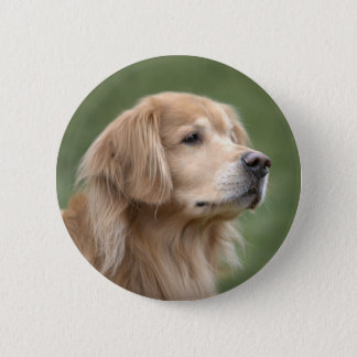 Golden Retriever in Closeup 6 Cm Round Badge