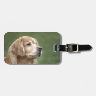 Golden Retriever in Closeup Luggage Tag
