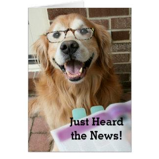 Golden Retriever Just Heard the News Congrats Card