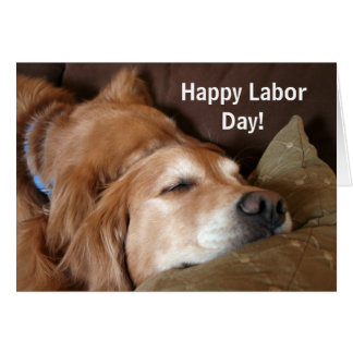 Golden Retriever Labor Day Card