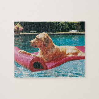 Golden Retriever Lying on an Air Bed in a Jigsaw Puzzle