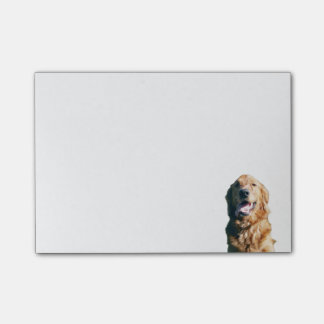 Golden Retriever Note Pad Post-it® Notes