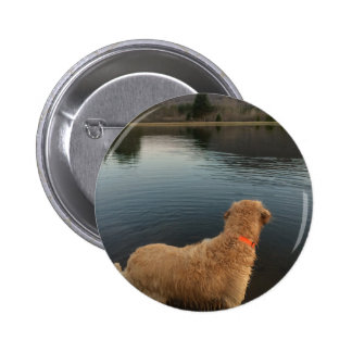 Golden Retriever on a Rock at the Lake 6 Cm Round Badge