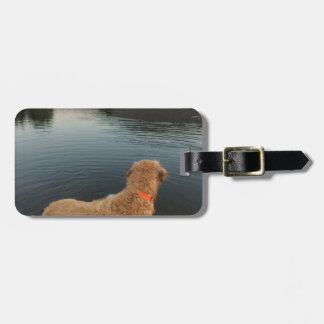Golden Retriever on a Rock at the Lake Luggage Tag