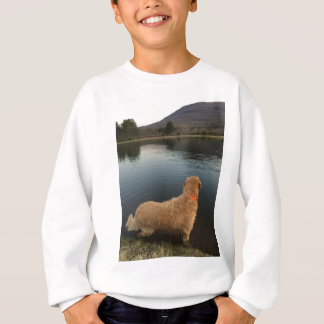 Golden Retriever on a Rock at the Lake Sweatshirt