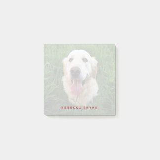 Golden Retriever Personalized Dog Lover Photo Post-it Notes