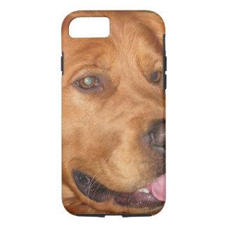 Golden Retriever Phone Case