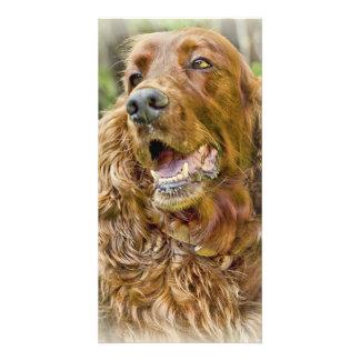 Golden Retriever portrait Personalized Photo Card