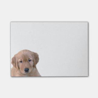 Golden Retriever Post-It Note Pad
