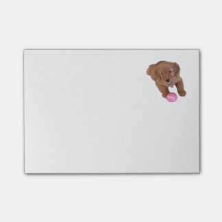 Golden Retriever Post-It Note Pad Post-it® Notes