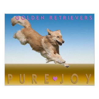Golden Retriever Poster 'Pure Joy'