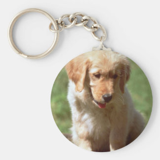 Golden Retriever pup Key Ring
