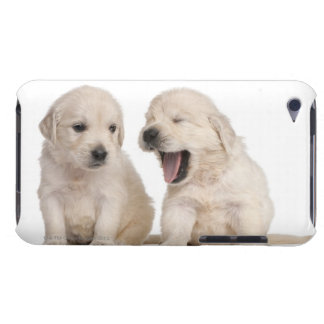 Golden Retriever puppies (4 weeks old) iPod Touch Cover