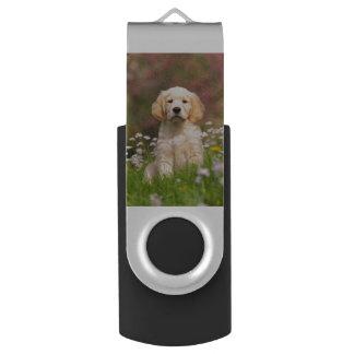 Golden Retriever puppy a cute Goldie USB Flash Drive
