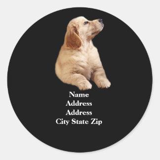 Golden Retriever Puppy Address Label Round Sticker