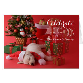 Golden Retriever Puppy and Christmas Card