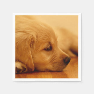 Golden Retriever Puppy Antoine Melancholy I Disposable Napkin