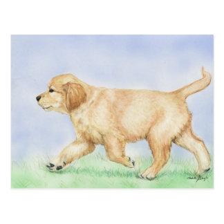 Golden Retriever Puppy Art Post Card