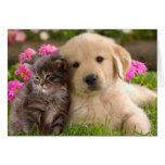 Golden Retriever Puppy Dog And Kitten Blank Note Card