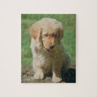 Golden Retriever Puppy Dog Puzzle